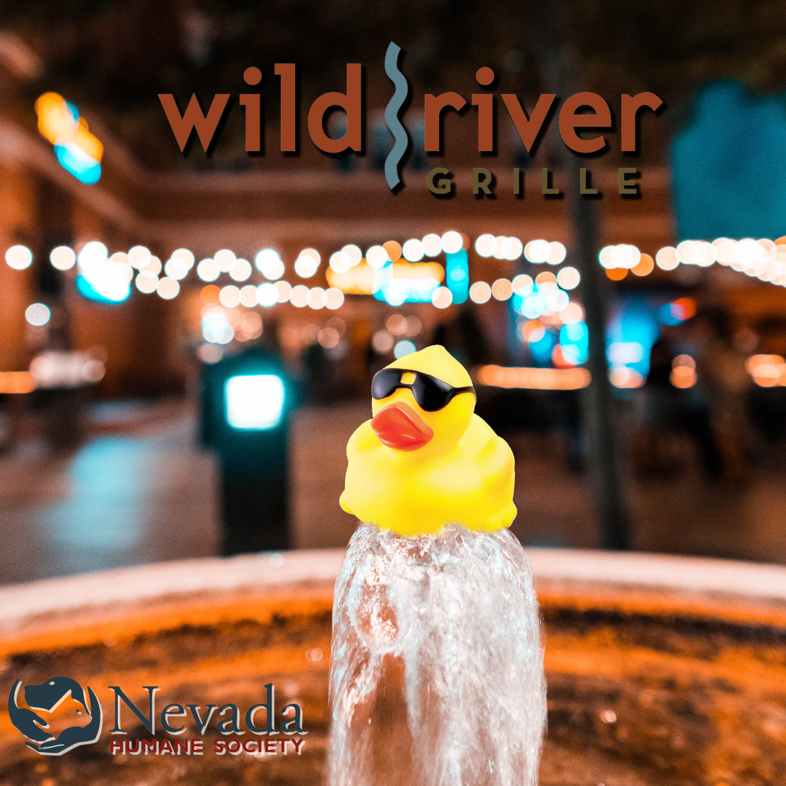 Wild River Grille is a Proud Sponsor  of the 2020 Duck Race!